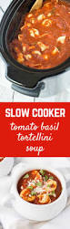 887 best recipes crock pot slow cooker images on pinterest