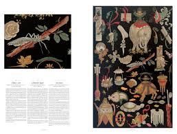 the world of ornament proper magazine