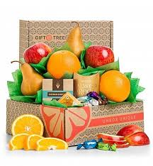 Fruits Baskets Christmas Fruit Baskets Holiday Fruit Basket Delivery Gifttree