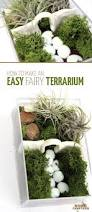 how to make an easy indoor fairy garden terrarium moms and crafters