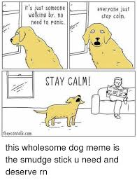 Stay Calm Meme - it s just someone walking by no need to panic stay calm they
