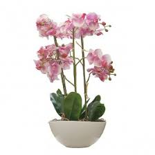 artificial orchids artificial orchids in pots real looking