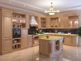 kitchen cabinet interior ideas different types of wood for kitchen cabinets interior design 9