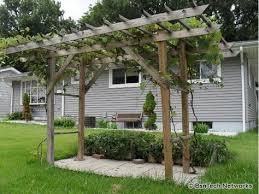 Arbor Trellis Ideas 40 Best Grapevine Arbor Images On Pinterest Grape Arbor Arbors