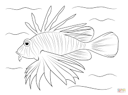 lionfish coloring page free printable coloring pages