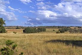 acre ranch land for sale best deal in fredericksburg