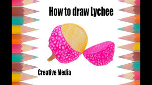 lychee fruit drawing how to draw lychee youtube