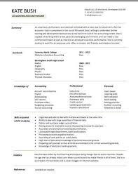 Resume Example Letter by Resume Examples Free Resume Examples It Professional Sample