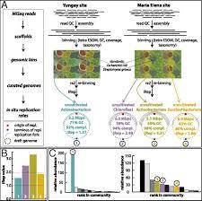 habitat si e social transitory microbial habitat in the hyperarid atacama desert pnas