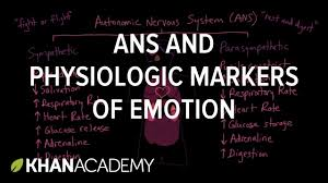 autonomic nervous system ans and physiologic markers of emotion