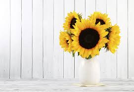 Vase Of Sunflowers 7 Tips For Long Lasting Sunflowers A Fresh Take