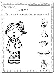 collections of 5 senses worksheet for kindergarten wedding ideas