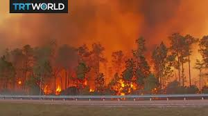 Wildfire Dc by Us Wildfires Fires Rip Through Kansas Colorado And Texas Youtube