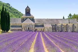 Gardening Zones - hardiness zones in france
