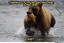 Dancing Bear Meme - om nom nom by carcarias meme center