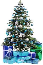 altogetherchristmas trees kp trees