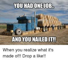 Nailed It Memes - and you nailed it when you realize what it s made of drop a