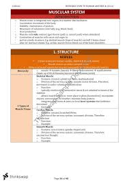 Human Anatomy And Physiology Notes Notes For Lsb142 Human Anatomy And Physiology Lsb142 Human