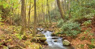 Smoky Mountain National Park Map Great Smoky Mountains National Park Vacation Travel Guide And