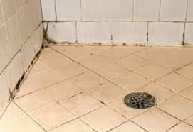 How To Remove Mold From Bathroom How To Remove Black Mold On Bathroom And Shower Tile