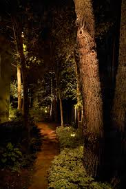 Tree Lights Landscape by Tree Lighting Ideas And Pictures