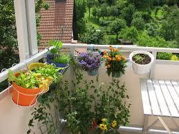 garten balkon garten anlegen auf balkon 10 ideen fürs gärtnern