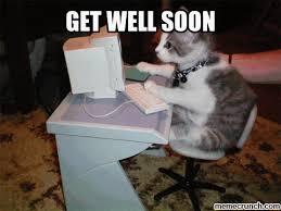 Soon Cat Meme - image gif w 480 c 1