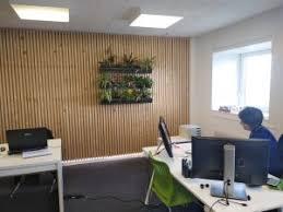 d oration bureau professionnel mur végétal décoration bureau professionnel terraflore