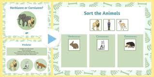 living things habitats herbivore carnivore teaching pack
