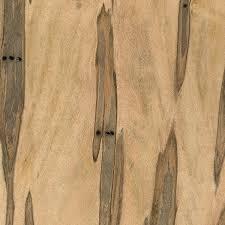 ambrosia maple the wood database lumber identification hardwood