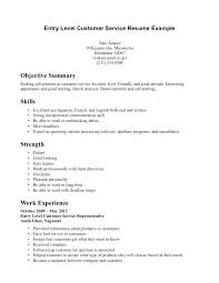 professional summary exle for resume resume objectives for customer service