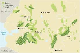 Walter Reed Map Tea Map Of Kenya Over The Teacups