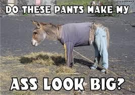 image result for funny donkey ass memes humor pinterest donkey