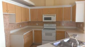 Kitchen Cabinet Resurfacing Ideas by Kitchen Cabinet Refinishing Orlando Fl Splendid Ideas 3 Cabinets