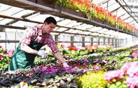 garten und landschaftsbau ausbildung ausbildung gärtner in der fachrichtung garten und landschaftsbau