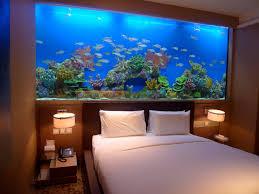 chambre aquarium l aquarium de ma chambre