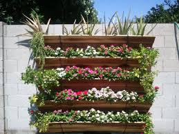 vertical gardening landscape design az landscape creations