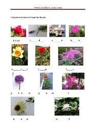 free garden flowers worksheets teacher u0027s zone