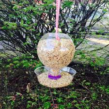 diy aquaball spring bird feeder u2013 aquaball u2013 naturally flavored