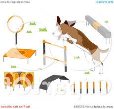 Backyard Agility Course Dog With Agility Course Items Createmepink