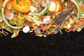 Composting Pictures by Compost Mulch Benefits U2013 How To Use Compost For Mulch In Gardens