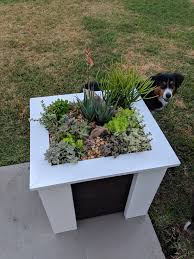 succulent planters finished building my succulent planters album on imgur