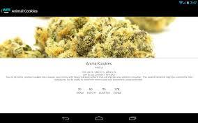Colorado Marijuana Dispensary Map by Weedmaps Marijuana Cannabis Strains Android Apps On Google Play