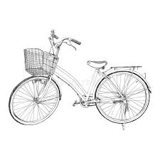 old bicycle sketch illustration hand drawn royalty free stock