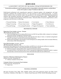 Example Of Finance Resume by Resume For Finance Professional Free Resume Example And Writing