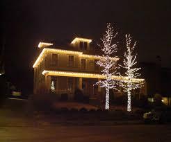 outdoor lights trees lights decoration