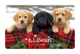 l l bean gift cards and e gift cards delivered free by mail or email