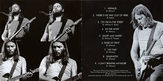 pink floyd archives e u david gilmour cd discography