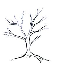 coloring page gorgeous tree drawing simple how to draw trees and