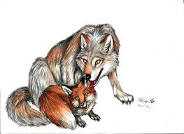 the fox and the wolf by tatujapa on deviantart